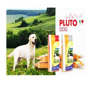 פלוטו - PLUTO