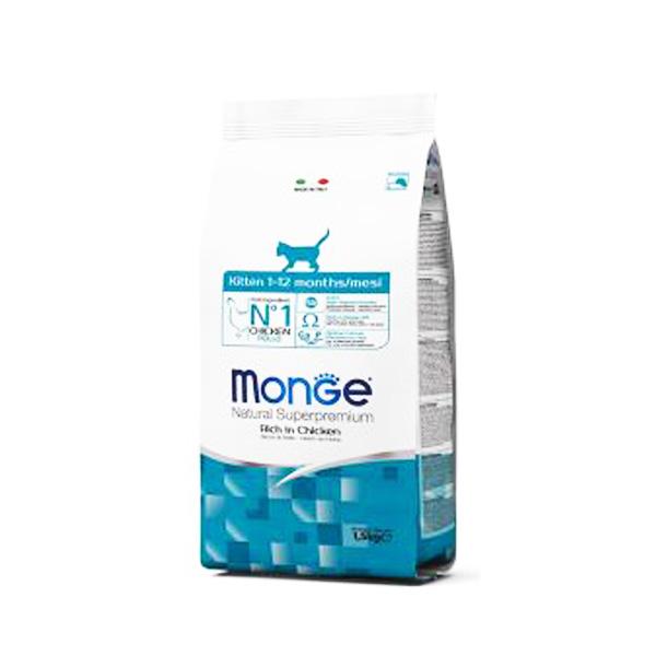 MONGE – מונג' לגורי חתולים