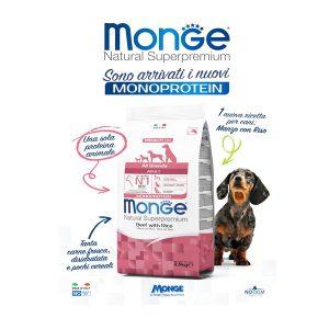 מונג' - MONGE